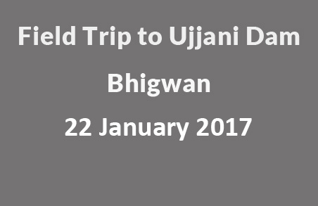Field Trip to Ujjani Dam, Bhigwan – Sunday, 22 Jan 2017