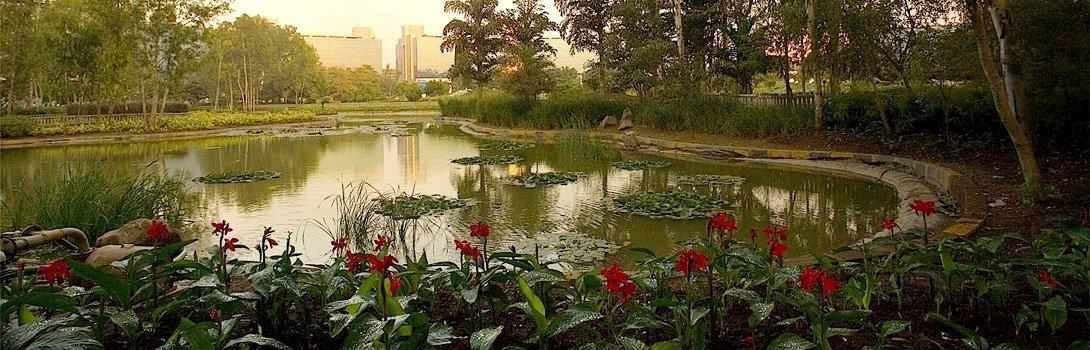 Water-body-at-Aditi-Gardens-in-Magarpatta-City