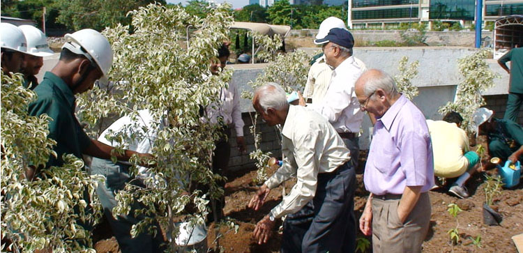 5-Senior-Citizens-participating-the-Plantation-Drive-at-Magarpatta-City1.jpg